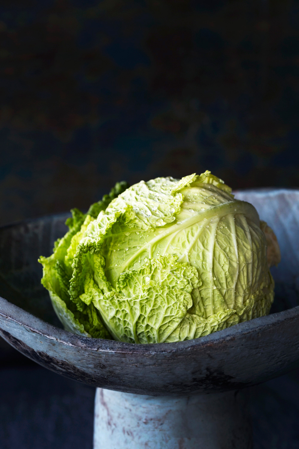 026_ingredient_cabbage_12099